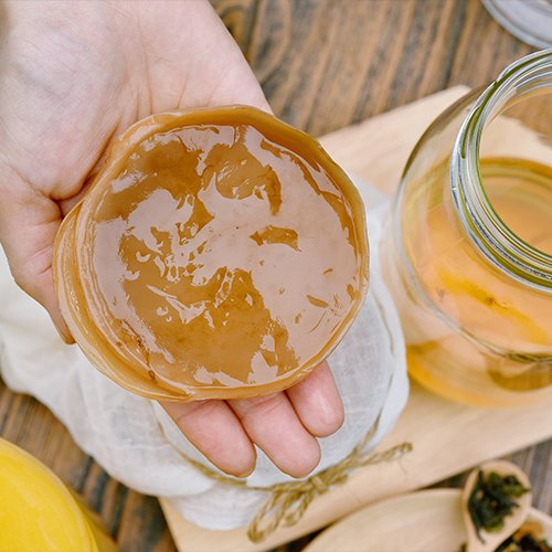 What is a SCOBY?