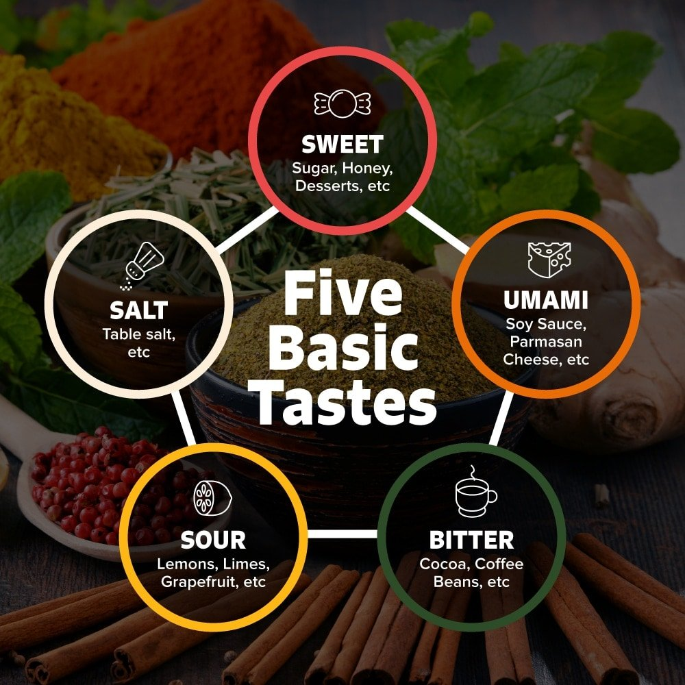 The Five Basic Tastes chart