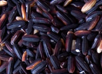 Pile of black and purple rice grains