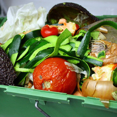 wasted food in dumpster