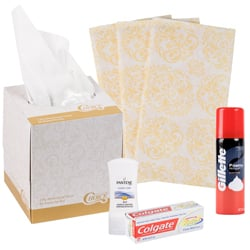 Disposable Hotel Amenities